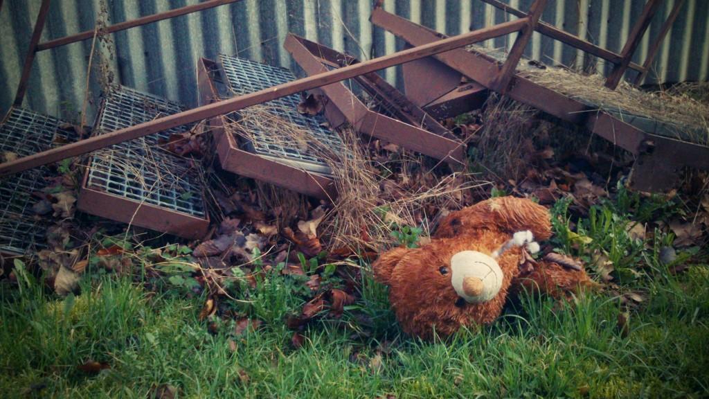 Roztrhaný medvídek u školních schodů